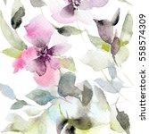 floral pattern. watercolor... | Shutterstock . vector #558574309