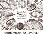 vector illustration frame with... | Shutterstock .eps vector #558590737