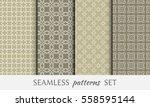 seamless geometric line... | Shutterstock .eps vector #558595144