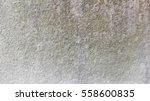 old rough wall texture...   Shutterstock . vector #558600835