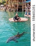 eilat  israel   november 15 ... | Shutterstock . vector #558601351