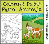 coloring pages  farm animals.... | Shutterstock .eps vector #558601975