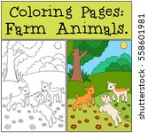 coloring pages  farm animals.... | Shutterstock .eps vector #558601981