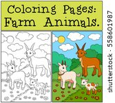 coloring pages  farm animals.... | Shutterstock .eps vector #558601987
