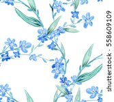 forget me not flowers seamless... | Shutterstock . vector #558609109
