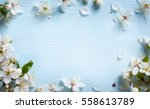 spring background  fresh flower ... | Shutterstock . vector #558613789