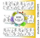 herbal tea banners collection.... | Shutterstock .eps vector #558619495