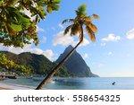 petit piton  st. lucia ... | Shutterstock . vector #558654325