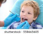 close up portrait of little boy ... | Shutterstock . vector #558665605