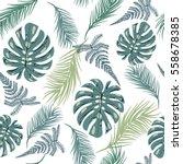 vector background tropical... | Shutterstock .eps vector #558678385