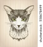 graphic poster with cat... | Shutterstock .eps vector #558678499