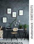 multifunctional room with desk... | Shutterstock . vector #558731071