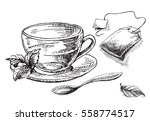 cup of tea and mint and tea bag ... | Shutterstock .eps vector #558774517