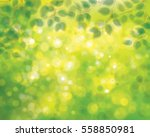 Vector Green Leaves On Sunshin...