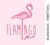flamingo pink flamingo vector...   Shutterstock .eps vector #558877651