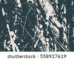 monochrome image. grunge...   Shutterstock .eps vector #558927619