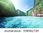 bay at phi phi island in... | Shutterstock . vector #558981739