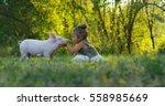 the little toddler girl... | Shutterstock . vector #558985669