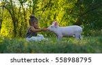 the little toddler girl... | Shutterstock . vector #558988795