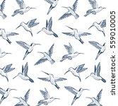 hummingbird vector pattern | Shutterstock .eps vector #559010005