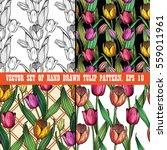 vector set of four seamless... | Shutterstock .eps vector #559011961