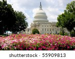 Stock photo us capitol building with summer flowers 55909813
