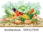 various vegetables and spices... | Shutterstock .eps vector #559117555