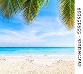 tropical beach background ... | Shutterstock . vector #559159039