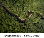 top view of amazon river  brazil