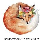 watercolor fox illustration....   Shutterstock . vector #559178875