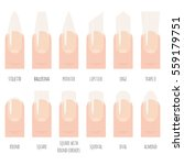 nails shape icons set. | Shutterstock .eps vector #559179751