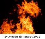 fire dragon | Shutterstock . vector #559193911