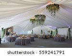 chandeliers made of roses and...   Shutterstock . vector #559241791