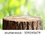 empty tree trunk for display... | Shutterstock . vector #559245679