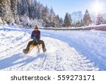 cheerful girl riding a sled...