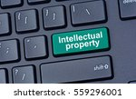 intellectual property on... | Shutterstock . vector #559296001