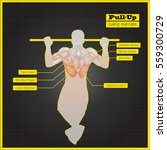 antagonistic muscle exercises... | Shutterstock .eps vector #559300729