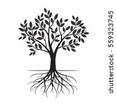 black tree and roots. vector... | Shutterstock .eps vector #559323745