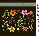 floral watercolor collection... | Shutterstock .eps vector #559421071