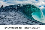 Shipstern Bluff  Tasmania