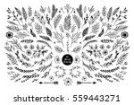 Stock vector hand sketched vector vintage elements laurels frames leaves flowers swirls feathers wild 559443271