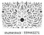 hand sketched vector vintage... | Shutterstock .eps vector #559443271
