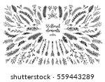 hand sketched vector vintage... | Shutterstock .eps vector #559443289