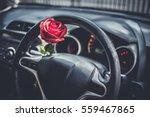 red roses flower in car for... | Shutterstock . vector #559467865