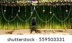 background green | Shutterstock . vector #559503331