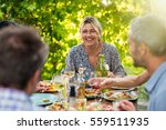 group of friends gathered... | Shutterstock . vector #559511935
