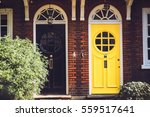 view of two vibrant black and... | Shutterstock . vector #559517641