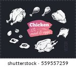 sketches chicken meat   poultry ... | Shutterstock .eps vector #559557259