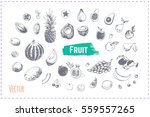sketches icons   fruit  ... | Shutterstock .eps vector #559557265
