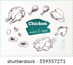 sketches chicken meat   poultry ... | Shutterstock .eps vector #559557271